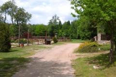 Leśnictwo Koczury (13)