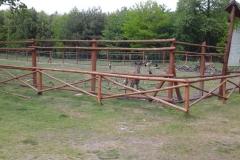 Leśnictwo Koczury (5)